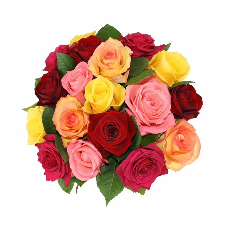 Bunch of  25 Mixed Roses