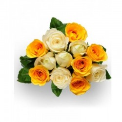 Bunch of 24 yellow and white Roses