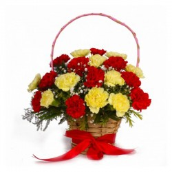 Basket of mixed carnations